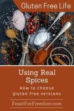 Pinterest mini image - Using real spices with antique spoons displaying a variety of colorful single spices