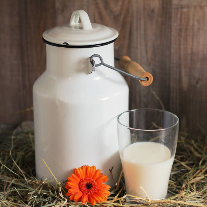 Glass of milk next to a milk can