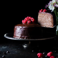 Chocolate layer cake garnished with raspberries