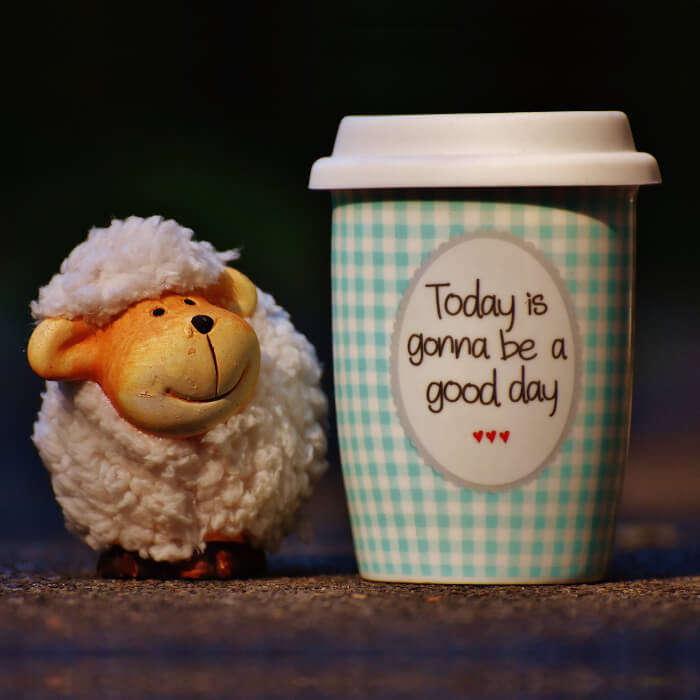 Coffee cup with happy saying next to a smiling stuffed lamb